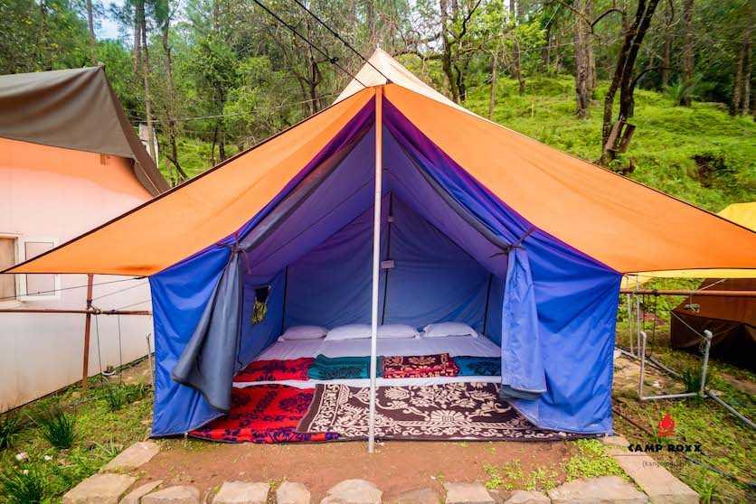 Alpine Tent, Camp Roxx