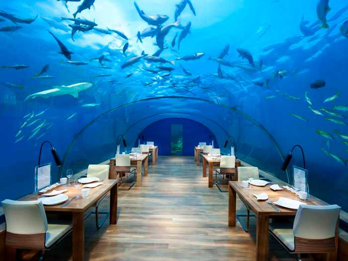 Ithaa Undersea Restaurant, Beautiful places in Maldives