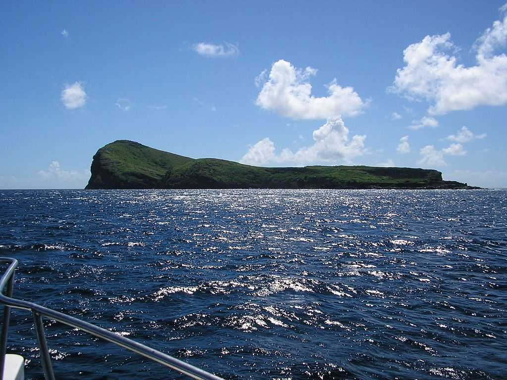 Coin de Mire, Snorkelling in Mauritius