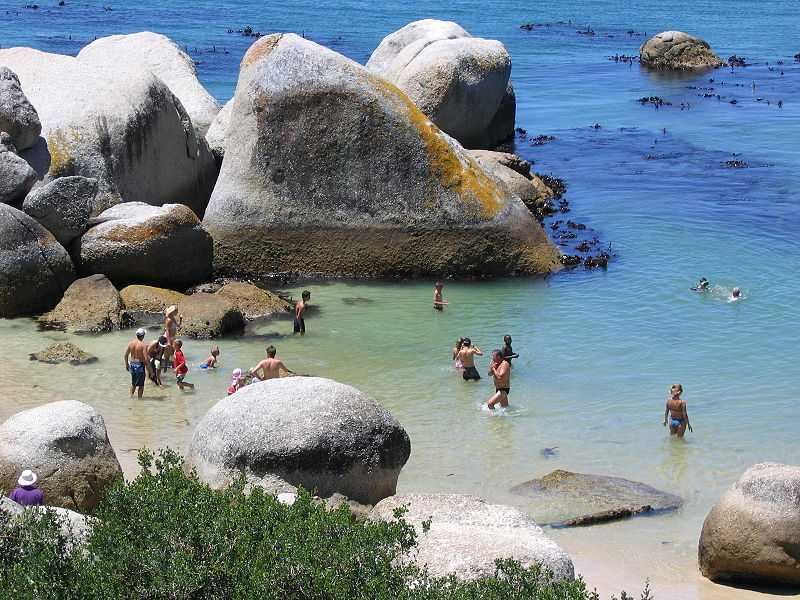 Cape Town, Best Family Destinations in the World to Take Your Kids