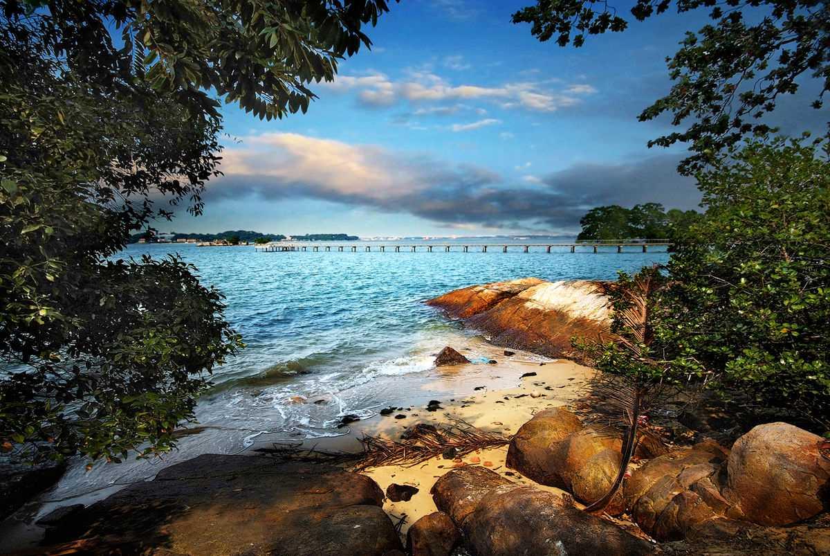 Chek Jawa Wetlands Singapore