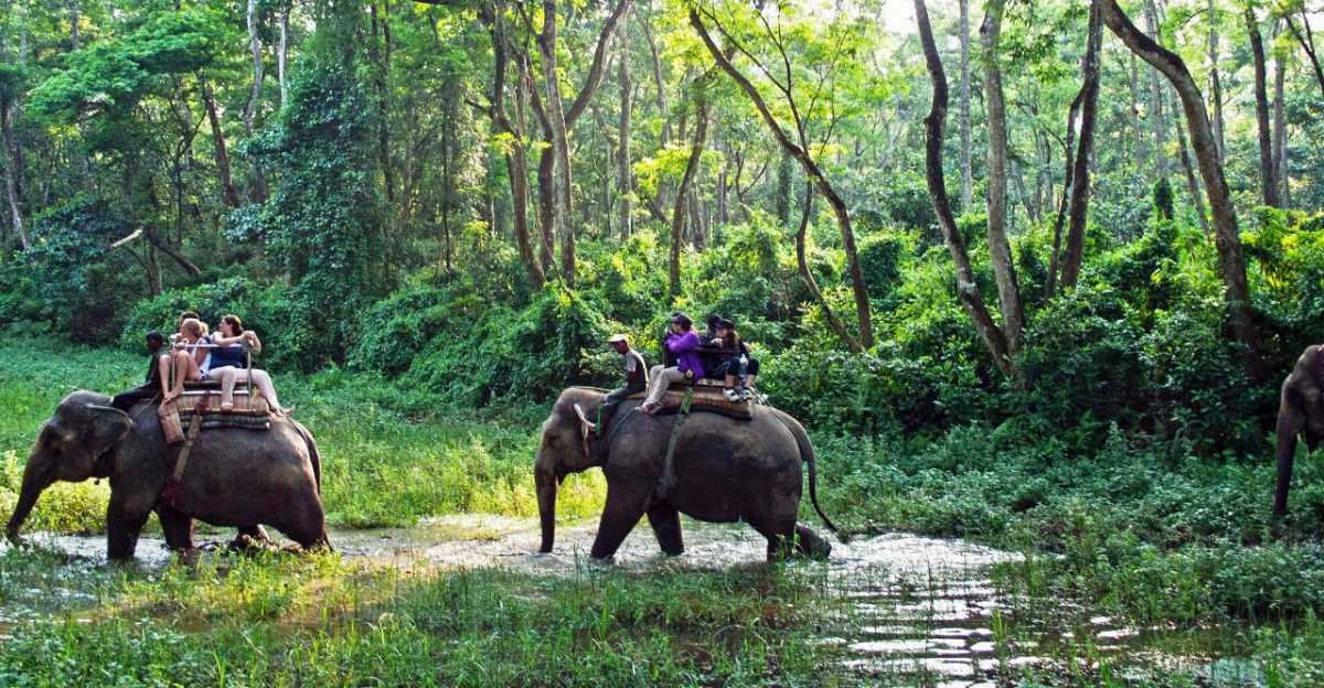 Chitwan National Park, Beautiful Places of Nepal