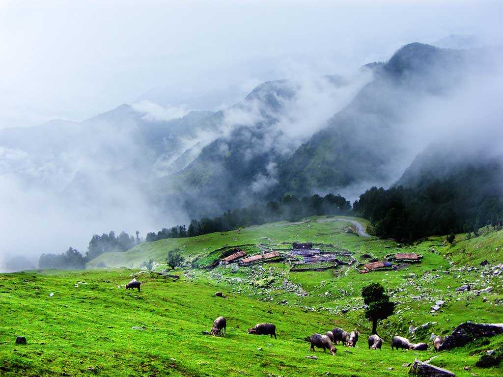 Chopta Valley North Sikkim Images And Best Time To Visit