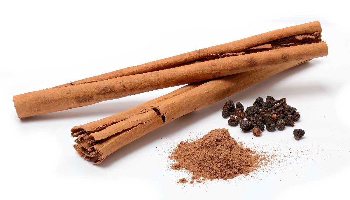 Kerala Herbs, Facts about Kerala