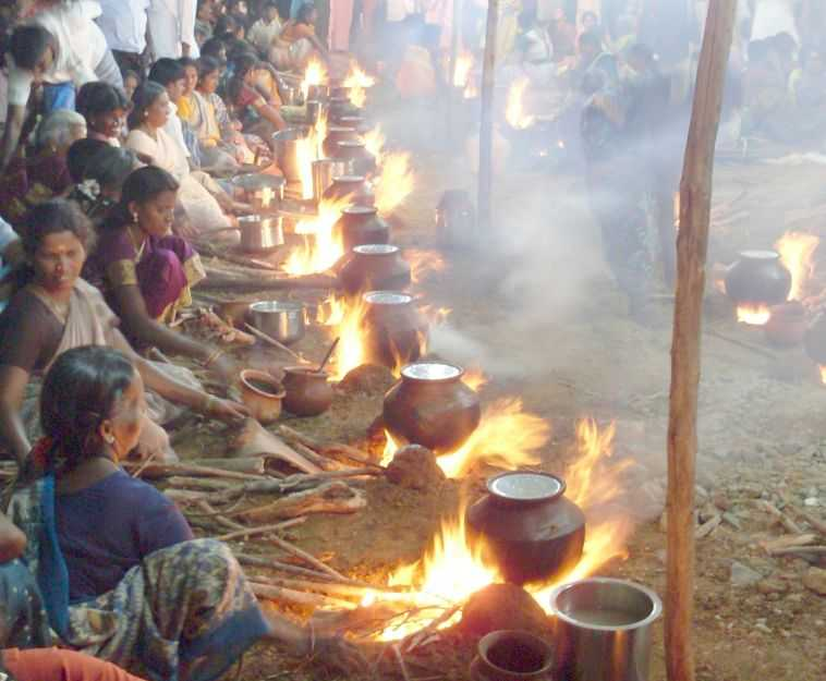 Pongal, Most famous South Indian Festival