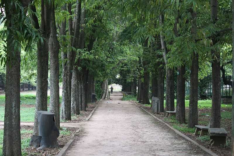 Image result for cubbon park in bangalore
