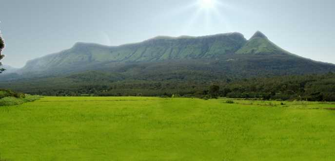 Chikmagalur, 3 day trip from Bangalore