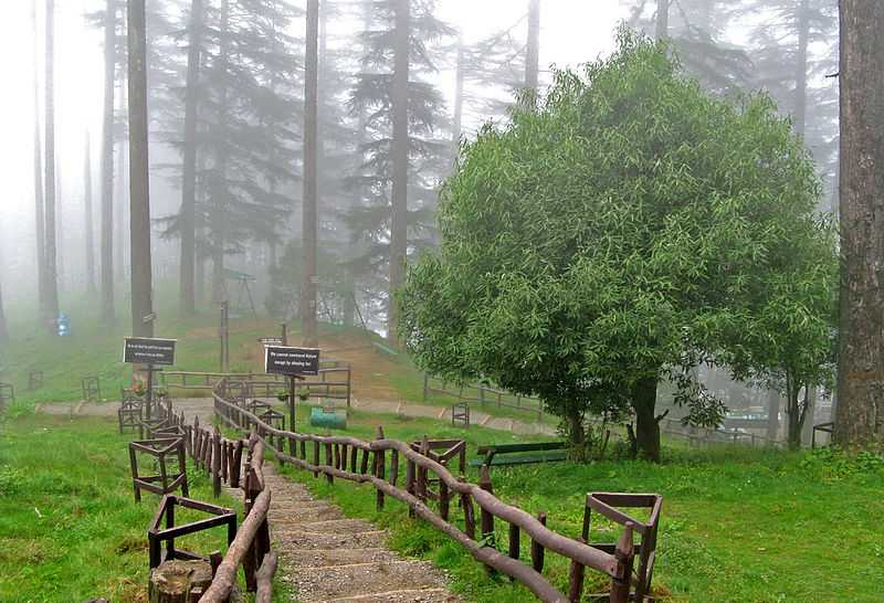 Dhanaulti in June