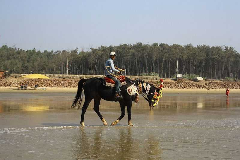 Digha, Horse Riding in India