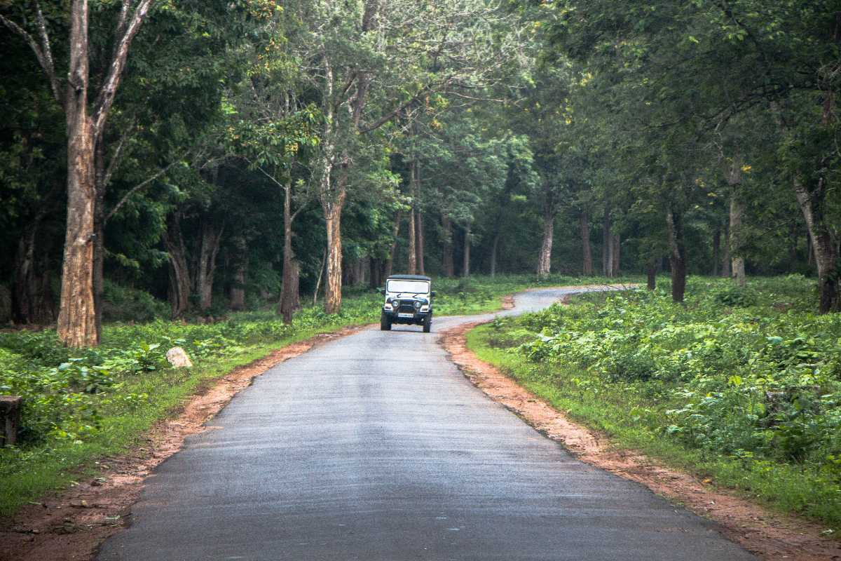 Road Conditions in Coorg