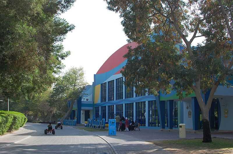 Children's City, Dolphinarium