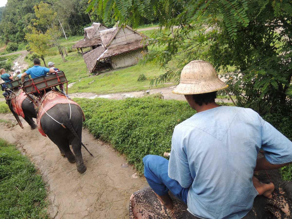 Elephant Ride in Phuket