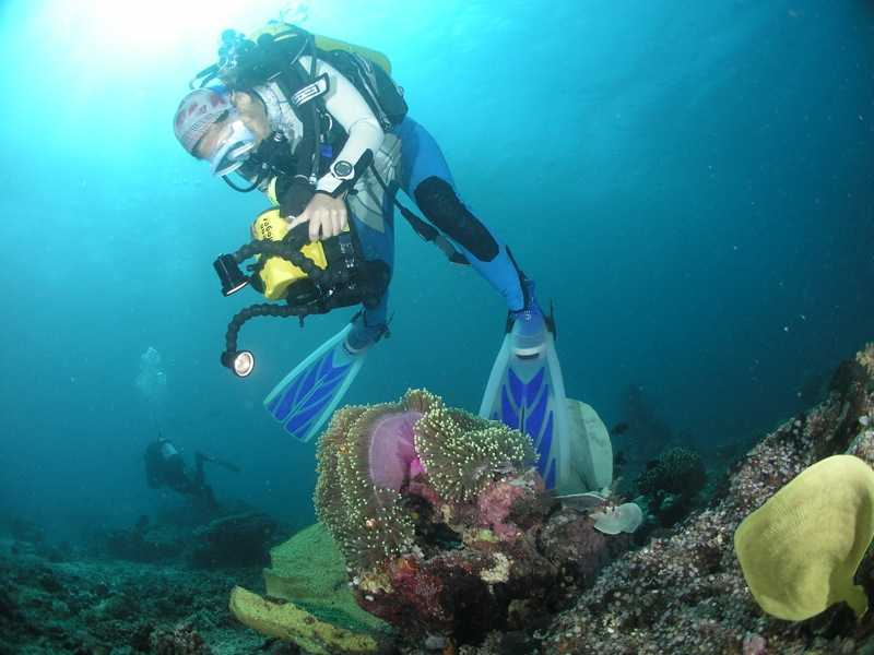 Scuba Diving in Raja Ampat