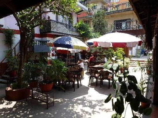 Gaia Coffee Shop, Top 15 Cafes in Kathmandu
