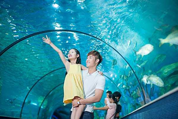 Vinpearl Aquarium Times City Hanoi Vietnam