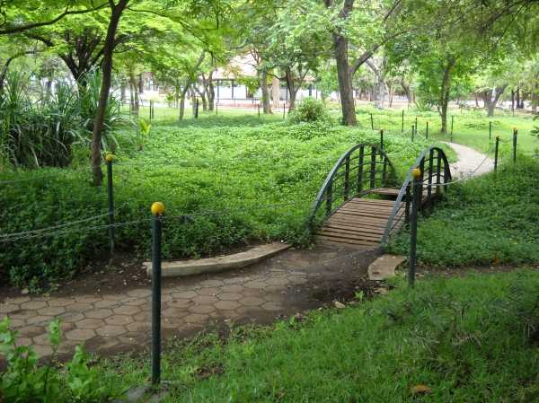 romantic places in chennai, guindy national park