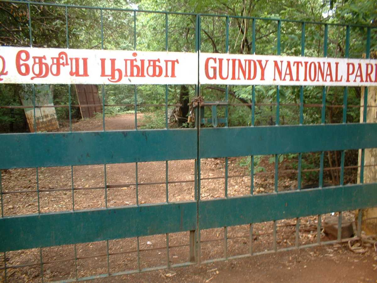 Guindy National Park
