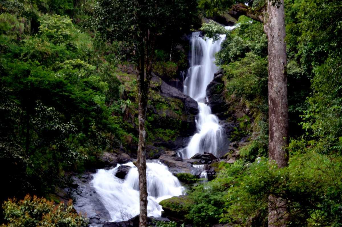Iruppu Falls, Coorg | Timings, Ticket Price & Photos