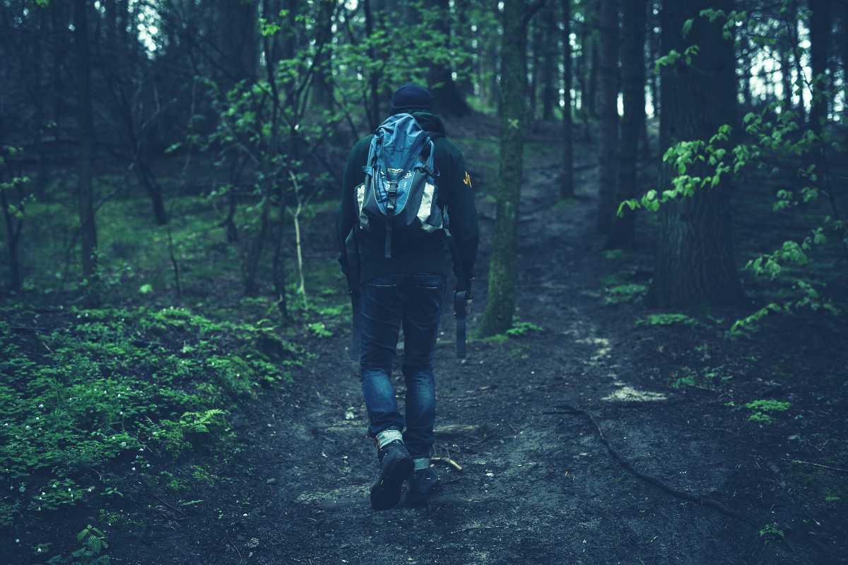 Jungle Trek, India's most underrated trekking routes are in Chhattisgarh