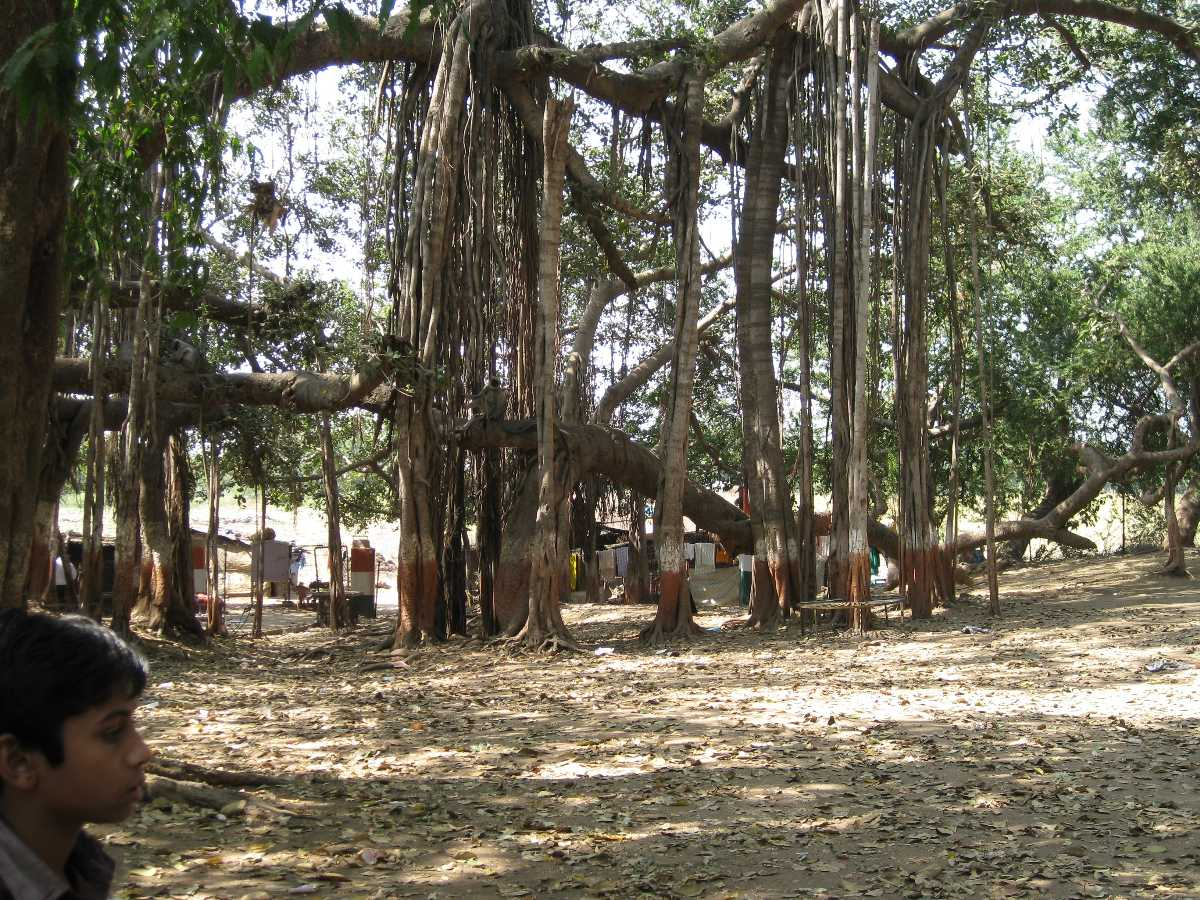 Kabirvad, One day trips from Vadodara
