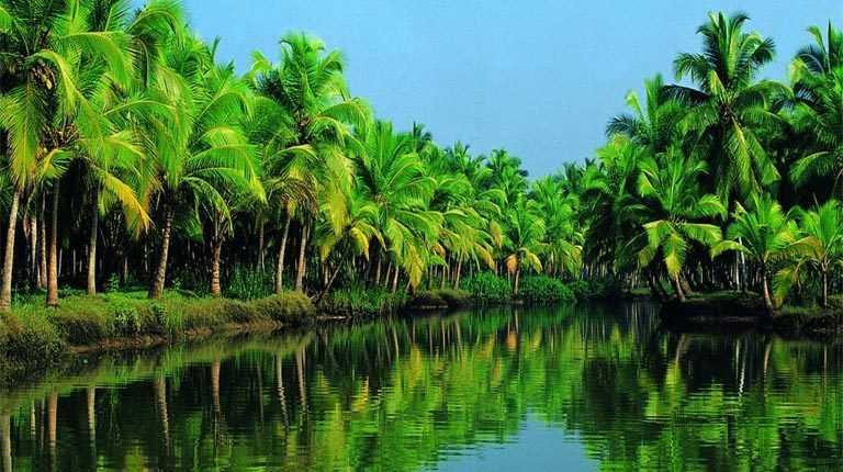 Kerala Backwaters, Facts about kerala