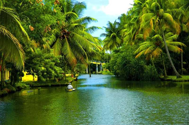 Kerala, Top States That Are Promoting Eco-tourism In India