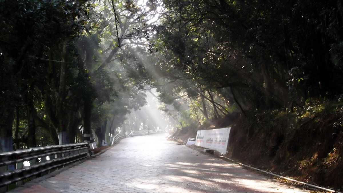 Road to Ooty, Coimbatore to Ooty