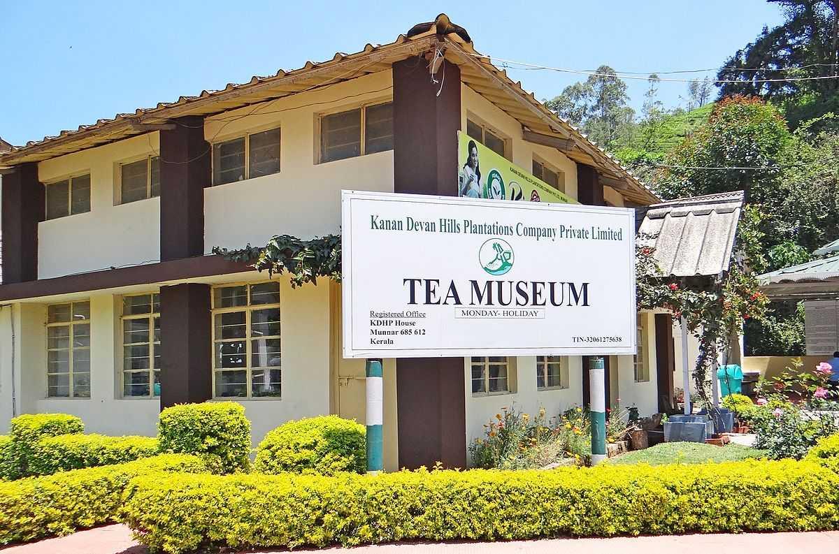 tea gardens in munnar, tea museum munnar