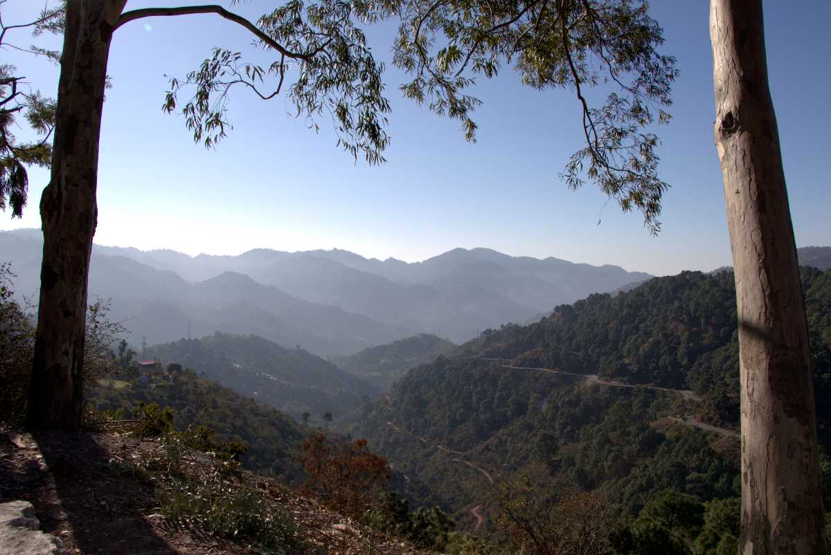 A View of Kasauli Hills