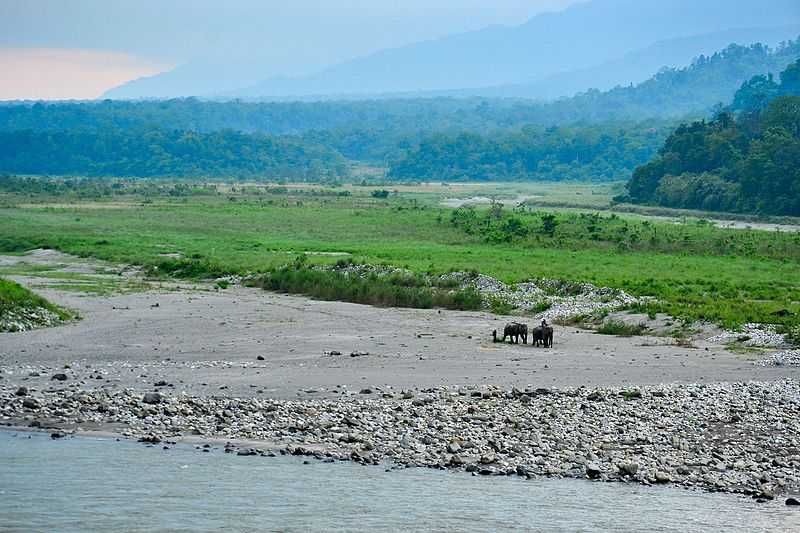 Manas NAtional park in Monsoon