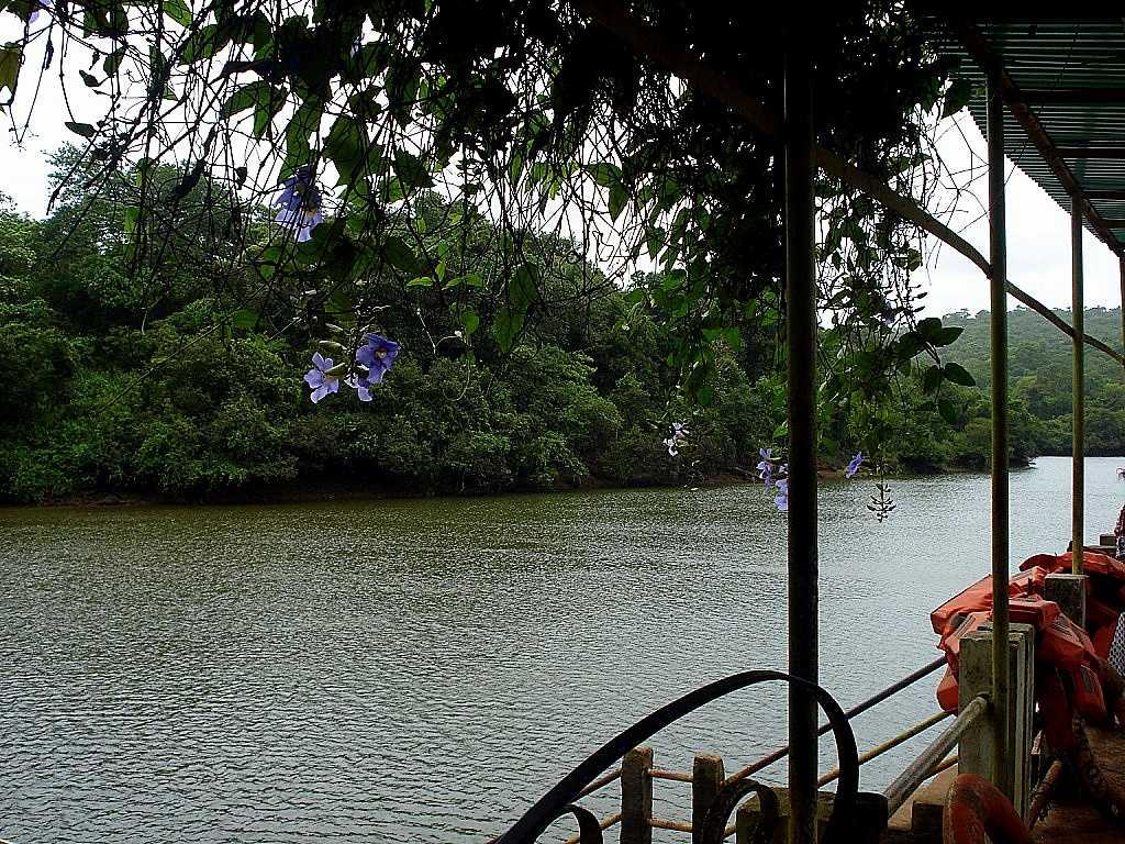 Mayem Lake, top picnic spots in Goa