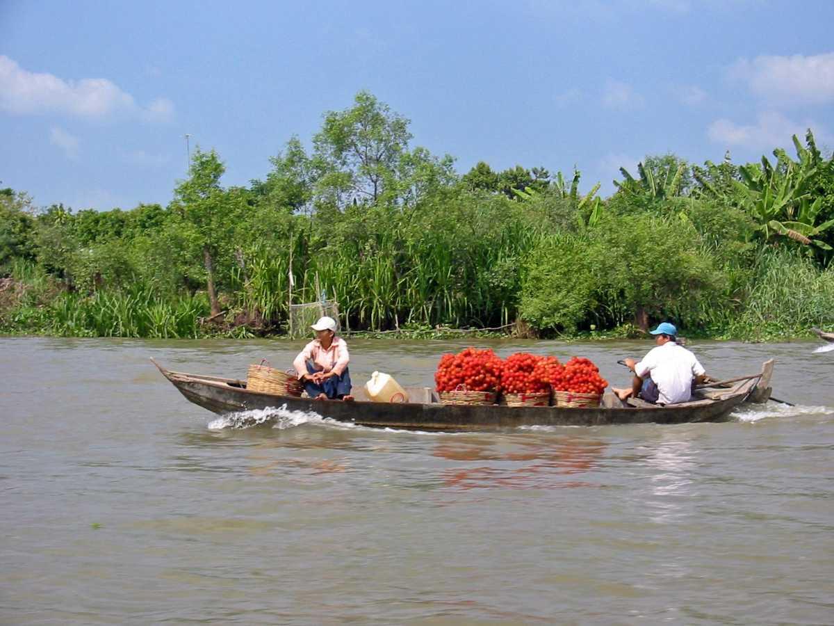 mekong delta, cycling in vietnam