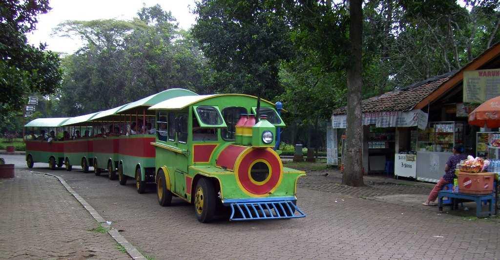 Train Ride at Ragunan Zoo