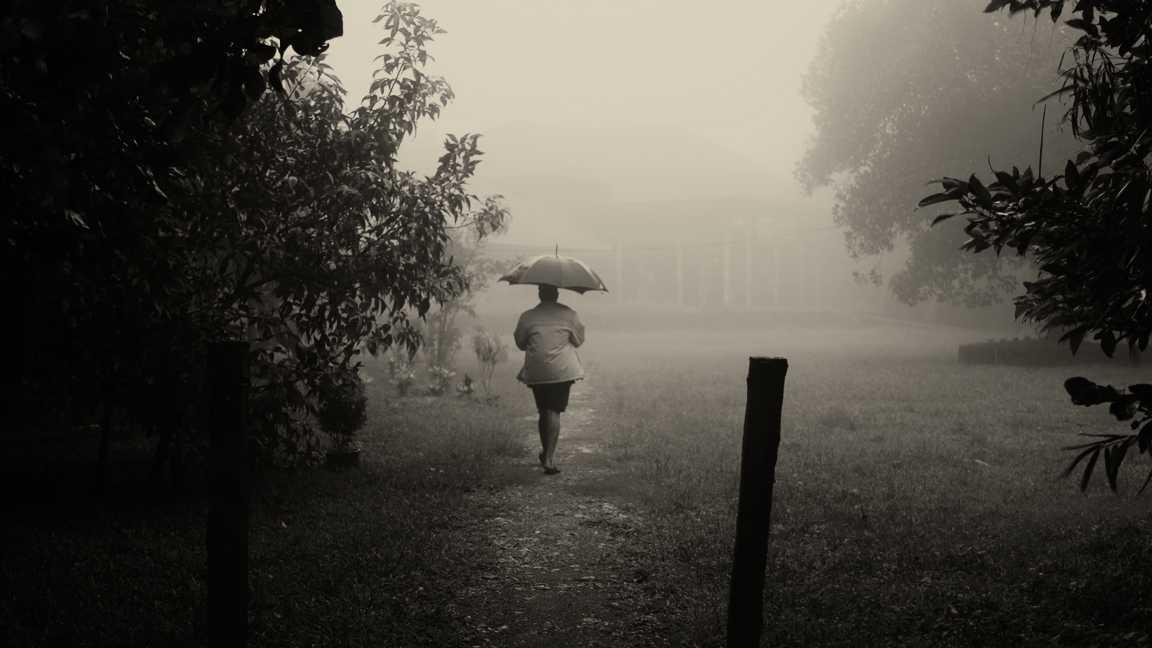 Monsoon in Wayanad