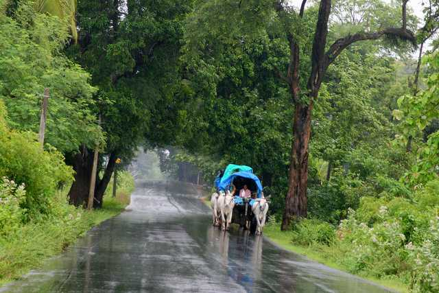 Monsoon in South India