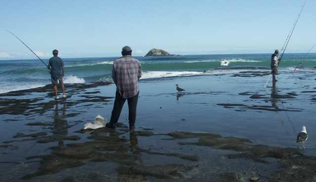 Fishing at Muriwai Beach