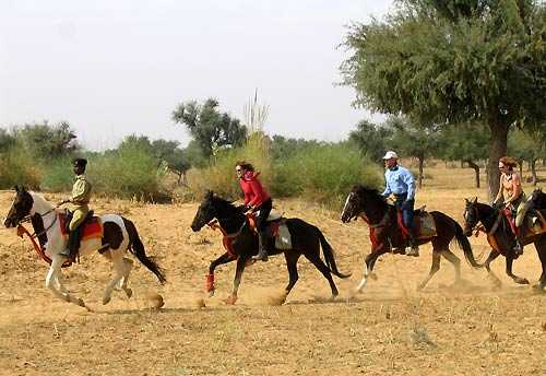 Horse Riding In India, Unicorn Trails Horse Riding Vacation