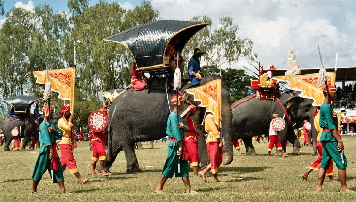 Festivals of Thailand, Surin Elephant Festival