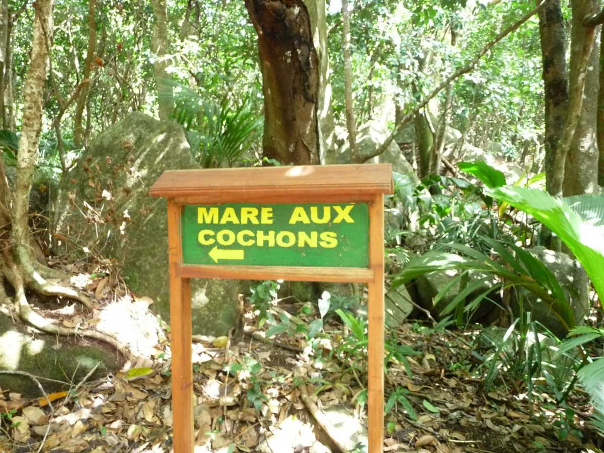 Mare aux Cochons hiking trail in Seychelles