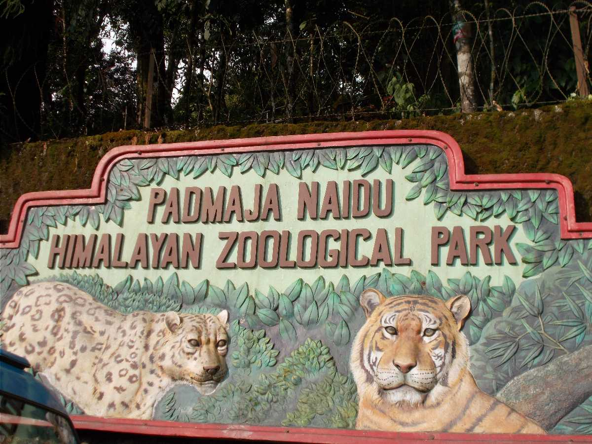Padmaja Naidu Himalayan Zoological Park sign