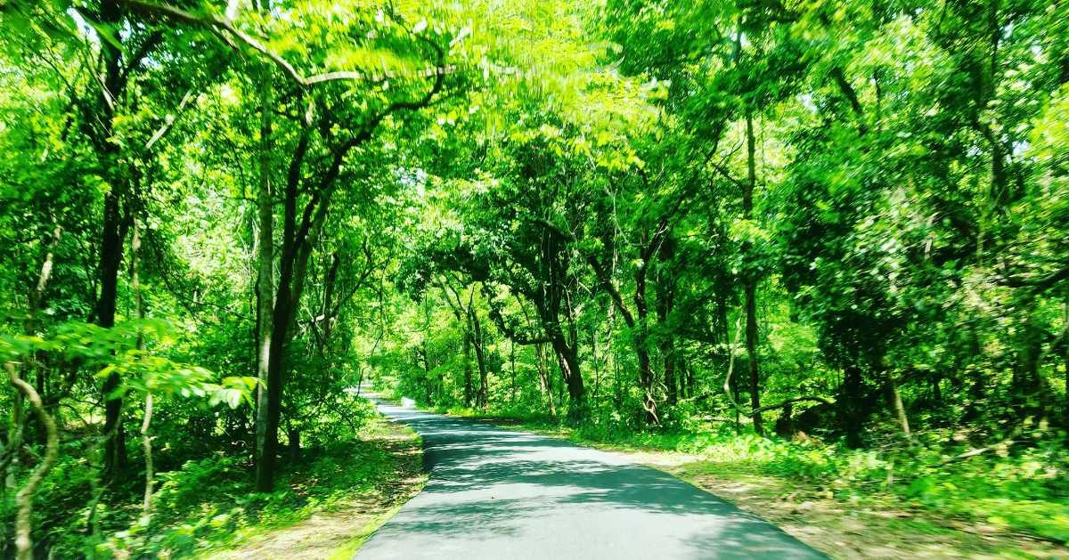 papikodalu National Park
