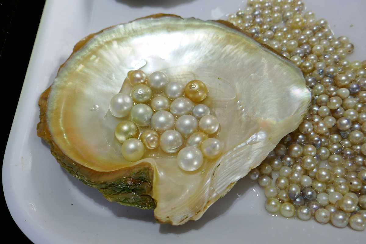 Shopping in Vietnam, Vietnamese Pearls, What to Buy in Vietnam