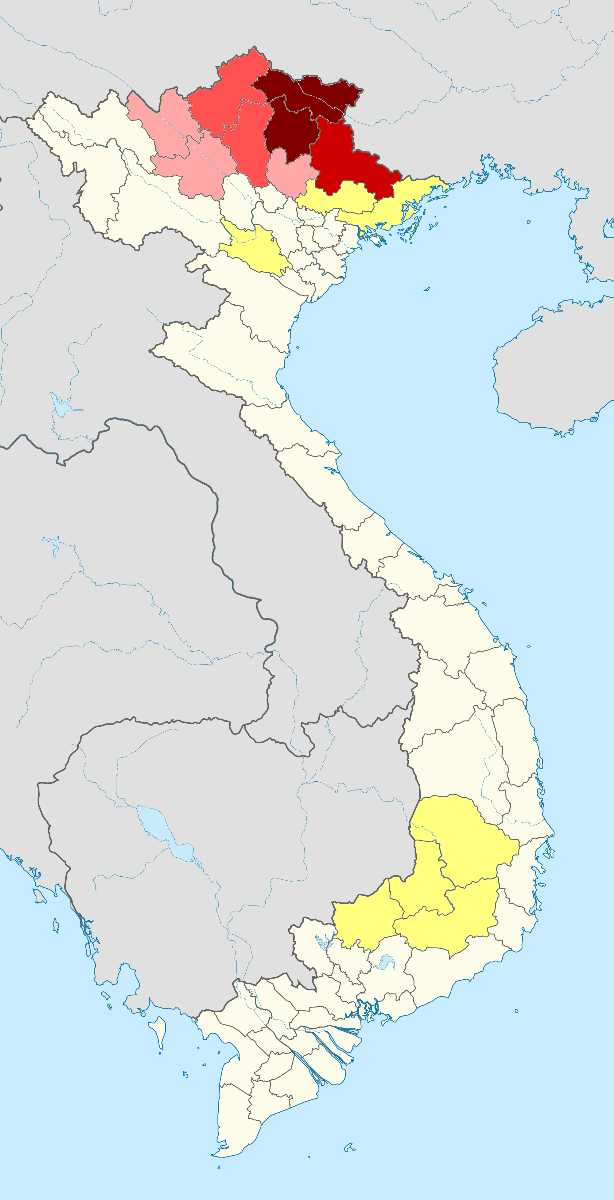 Languages in Vietnam, the Tay People in Vietnam