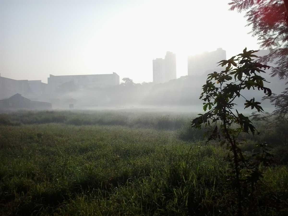 Aarey Milk Colony, Mumbai Haunted places