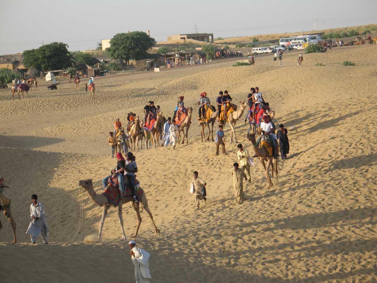 Camel Ride in Pushkar