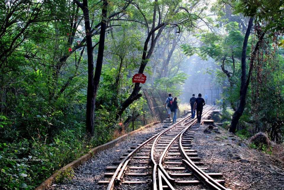 romantic places in mumbai, sanjay gandhi national park