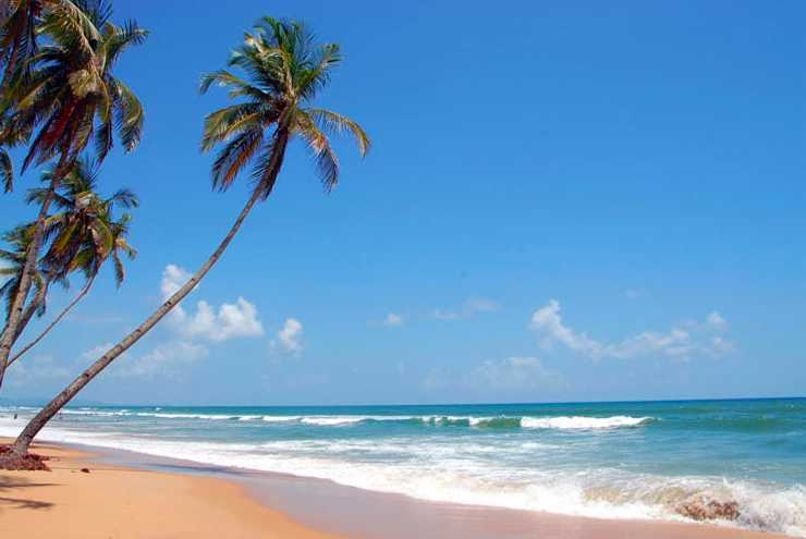 Colva Beach, Goa beaches, best beaches in goa,  how many beaches in goa?