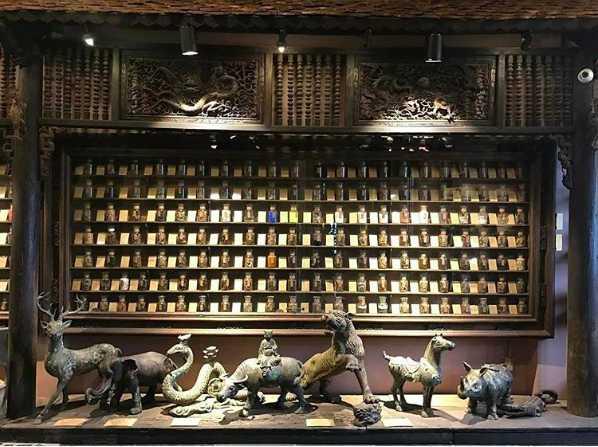 Museum of Traditional Vietnamese Medicine, Ho Chi Minh City, Vietnam
