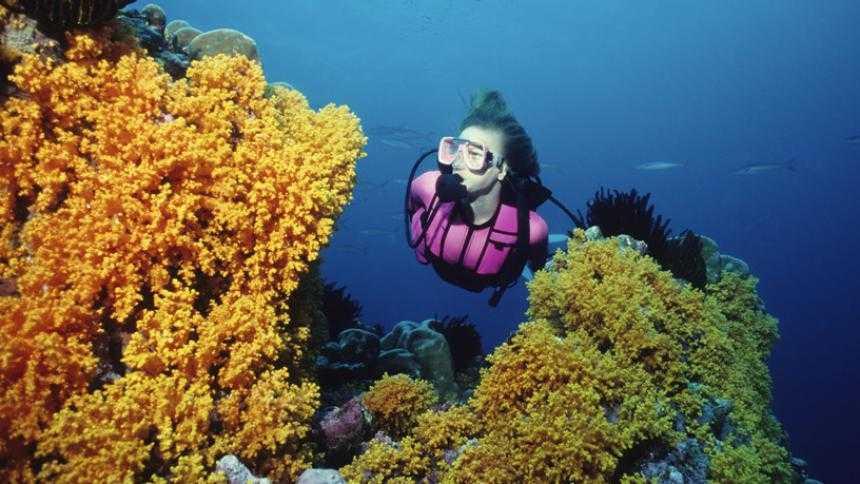 Scuba Diving in Lombok
