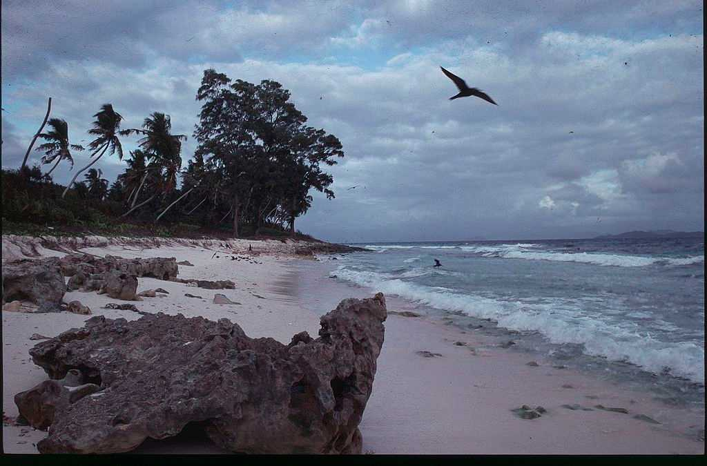 Aride Island Seychelles